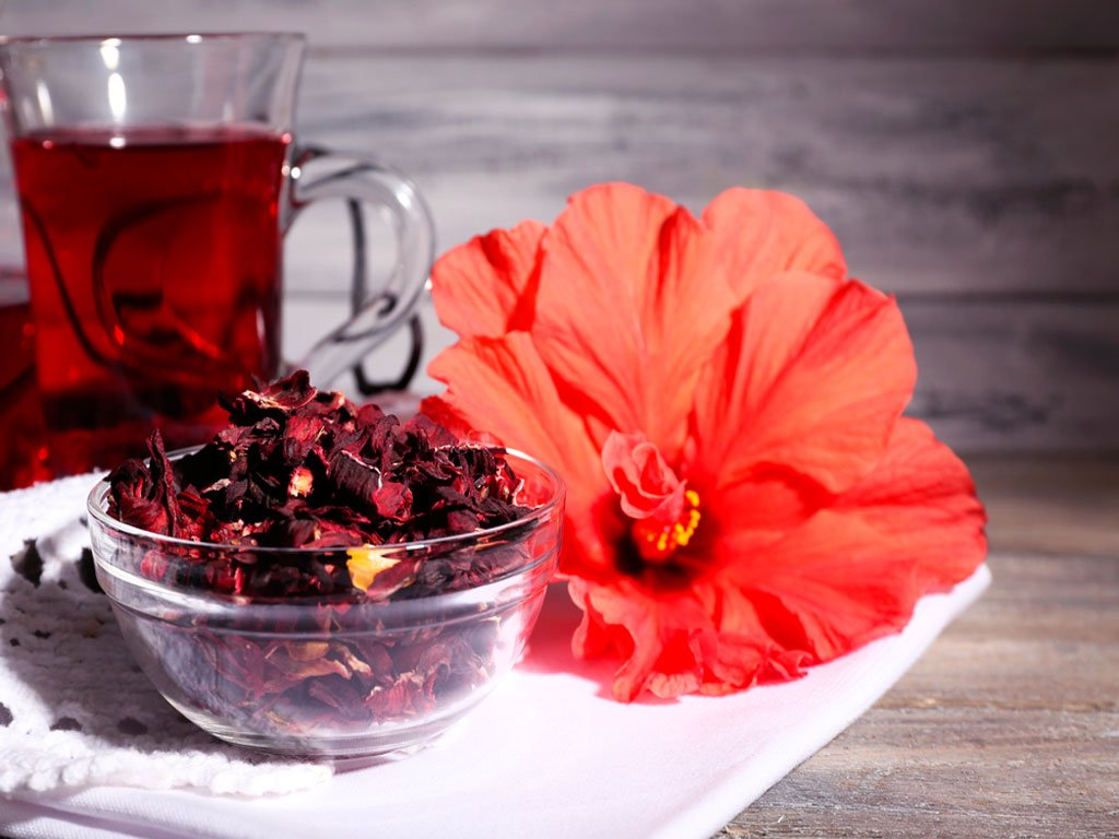 Chá de hibisco para perder peso