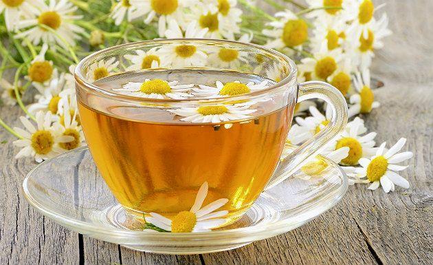 Chá seca barriga camomila