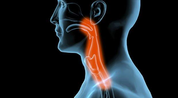 melhor remédio para a dor de garganta