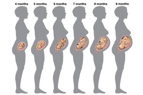 Corrimento Amarelado na Gravidez – Tudo o que Você Precisa Saber