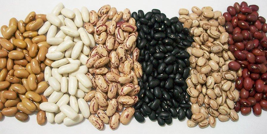 Alimentos que ajudam no ganho de massa muscular