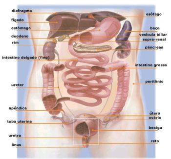 Inflamação na vesícula