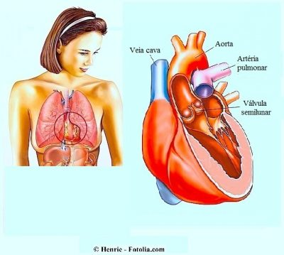 Sintomas do mamilo dolorido