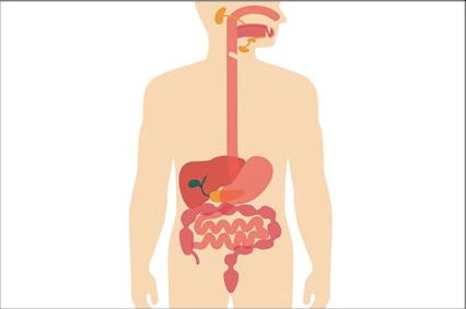 Causas do sangramento retal com sangue vivo em grande quantidade