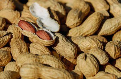 Benefícios do amendoim