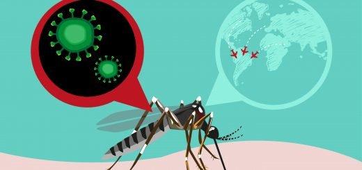 Como acontece o tratamento da febre zika